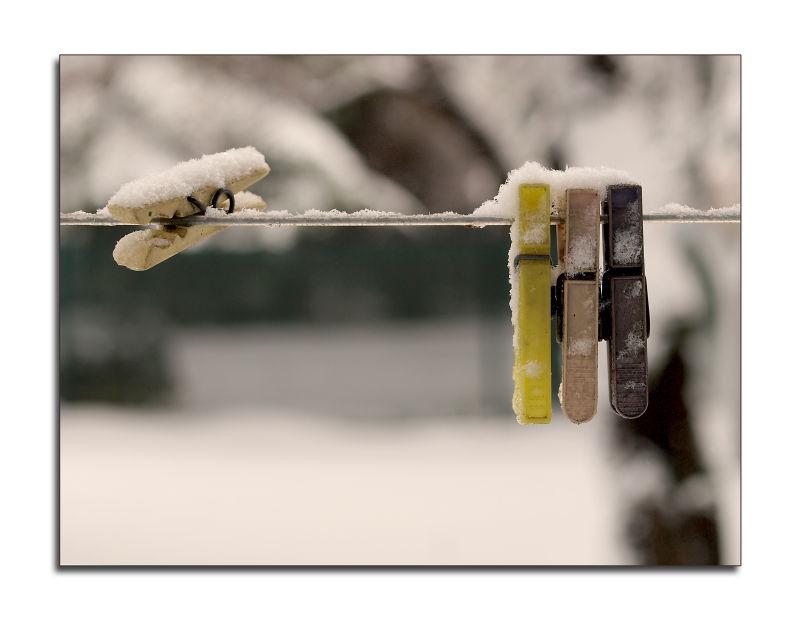 winter still-life