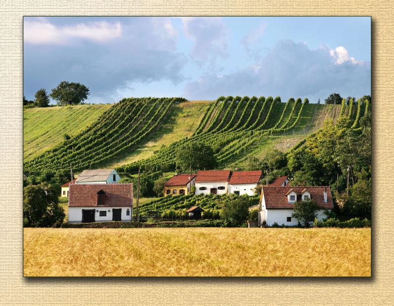 weinviertel winequarter cellars winter austria