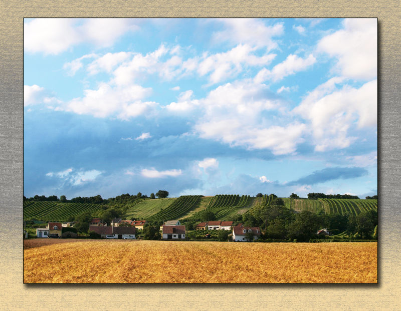 weinviertel winequater