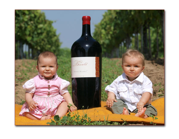 kids wine austria bottle winyard diwald