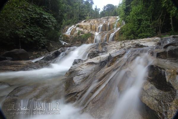 Hutan Lipur Sungai Pandan