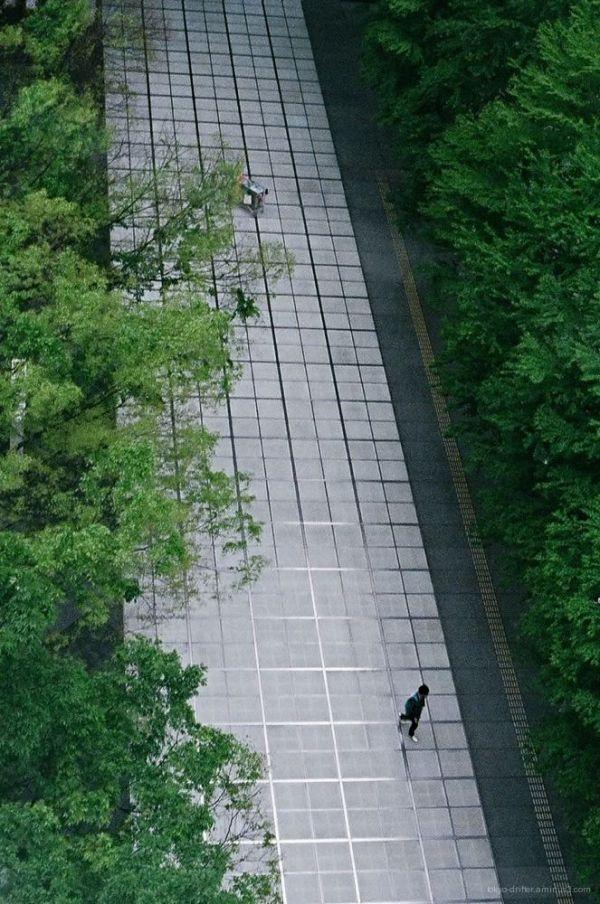 Glass Paneled Walkway
