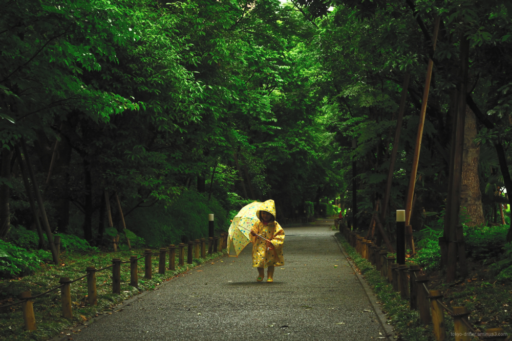 Little person treads a wooded path on a rainy day.