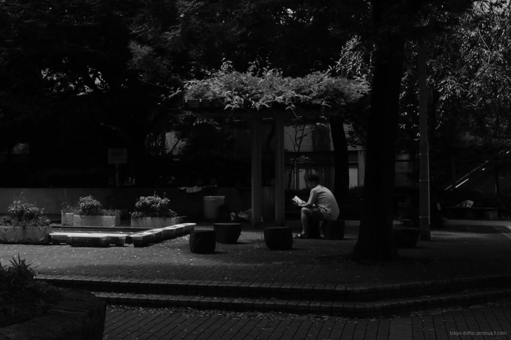 Man enjoys a book in a quiet nook.