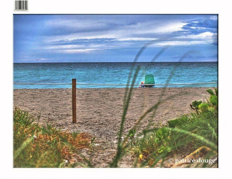 dania beach , florida , south florida , pdouge