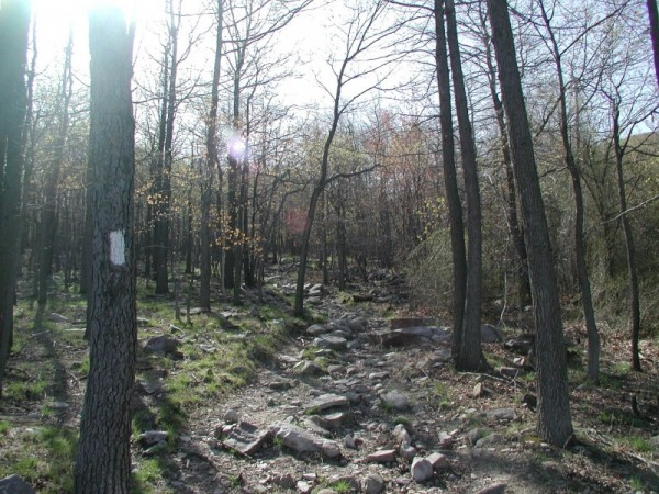Afternoon hiking trail