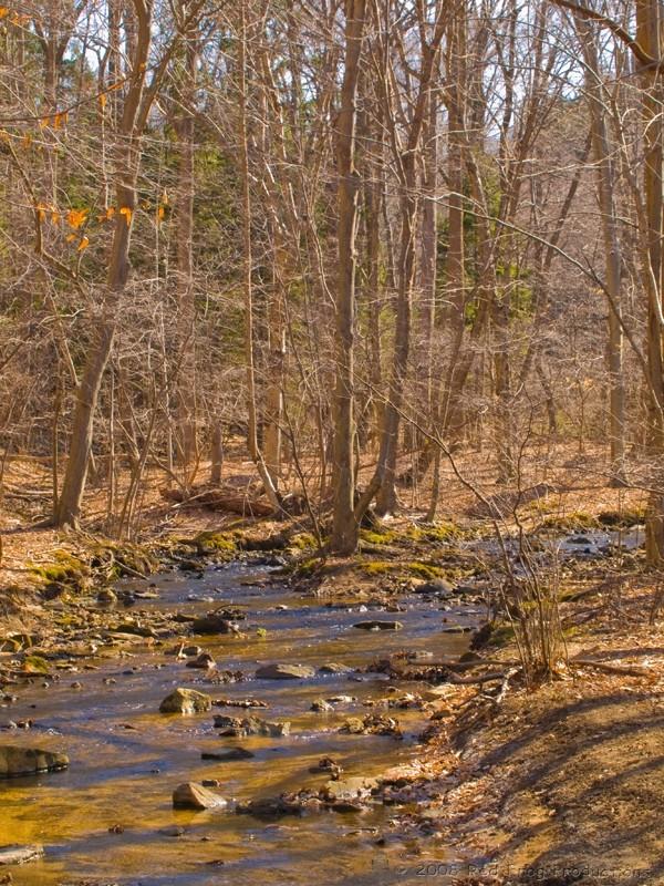 Upper Merrill Creek