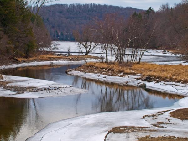 Ariel Creek