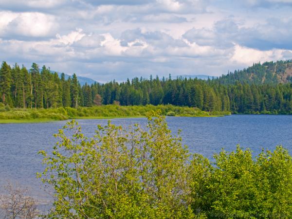 Middle Thompson Lake