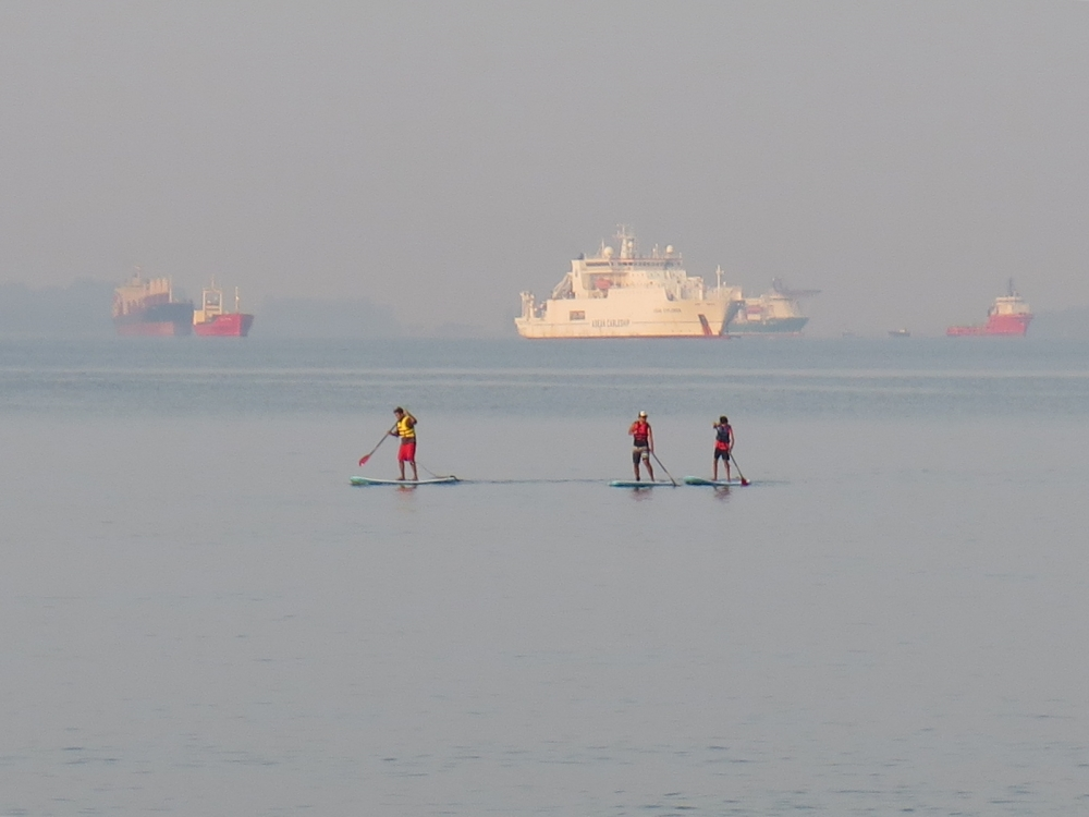 paddle boarding in the harbour