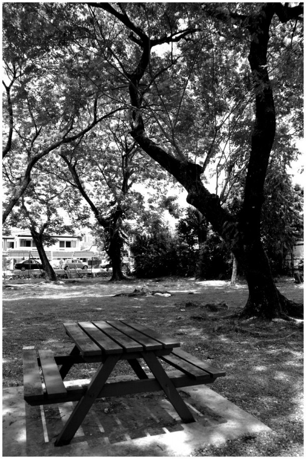 A Park Left Alone