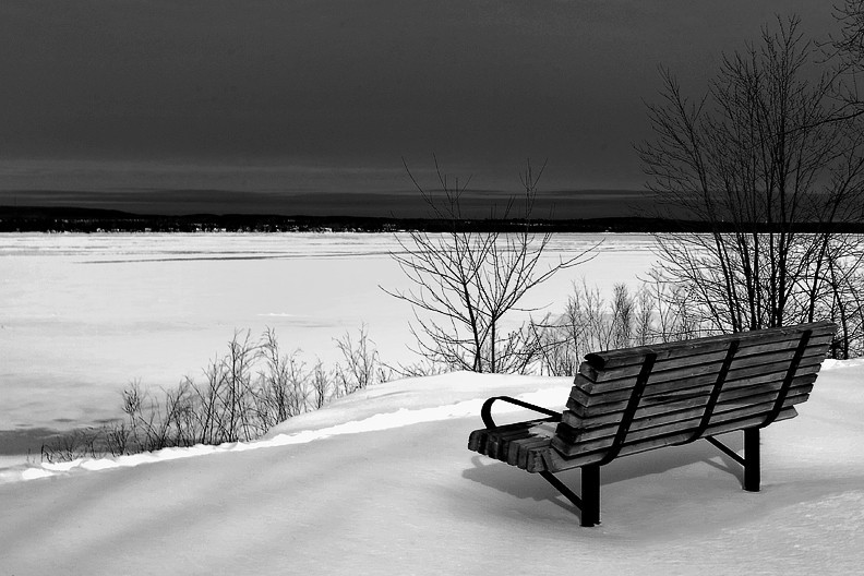Cold Bench