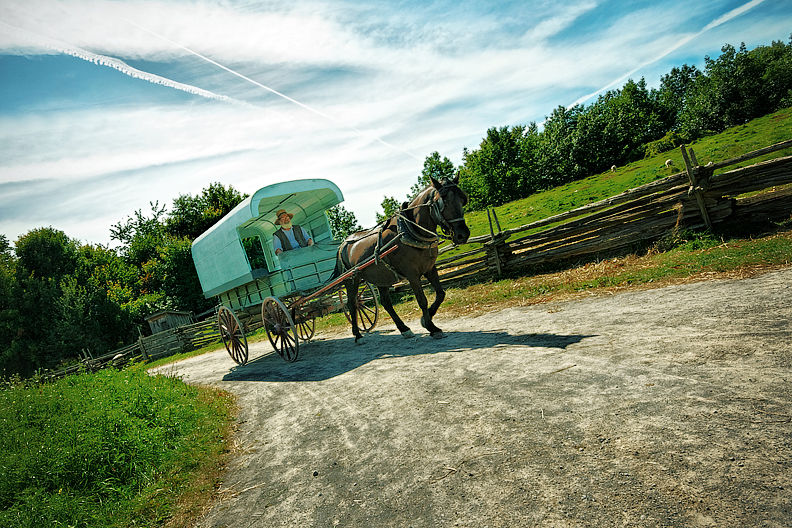 Trip to 1860: Horse & Wagon