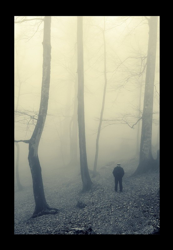Man And Fog