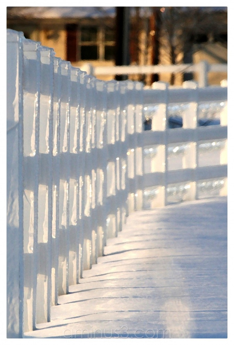 White frozen fence
