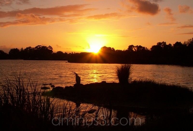 sunset on perth