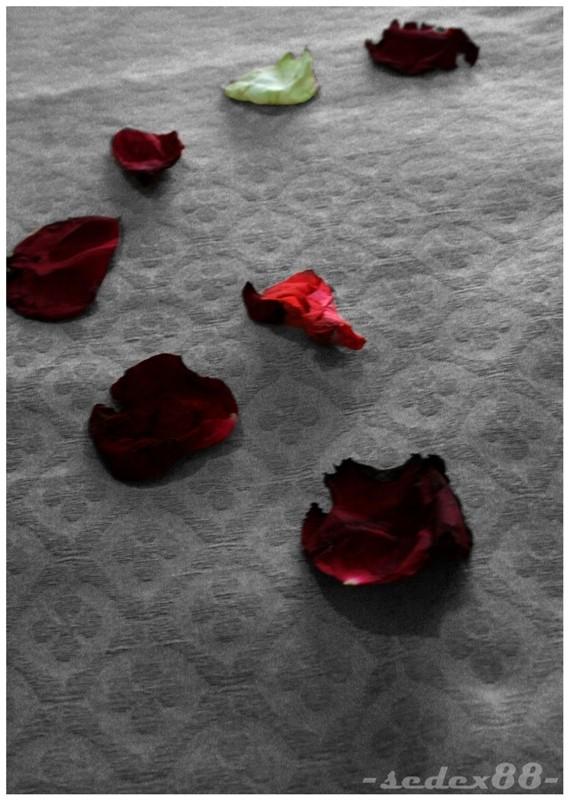 Engaged - Flowers