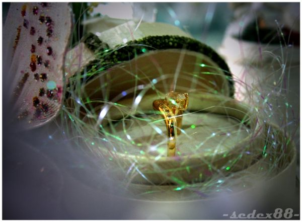Engaged - The Ring