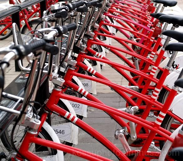 lined up, red, bicycle