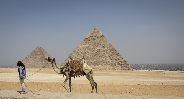 Walking the Camel
