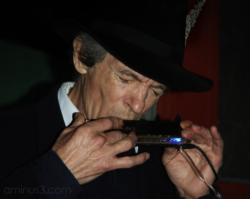 People - Harmonica Man