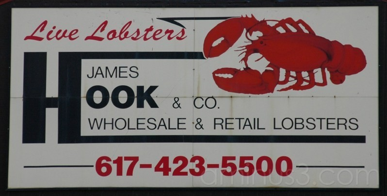 James Hook and Co - Live Lobsters