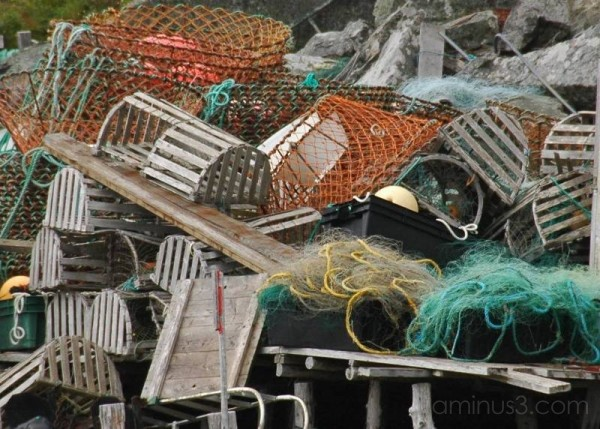 Crab Pots and Lobster Traps Quidi Vidi NL Canada