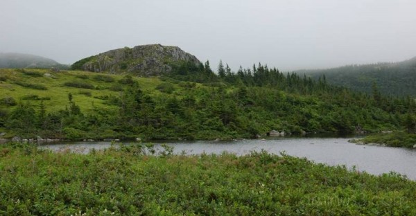 Isthmus ofAvalon, Newfoundland, Canada