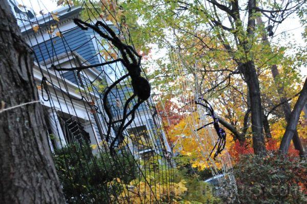 Suspense - Halloween Spiders