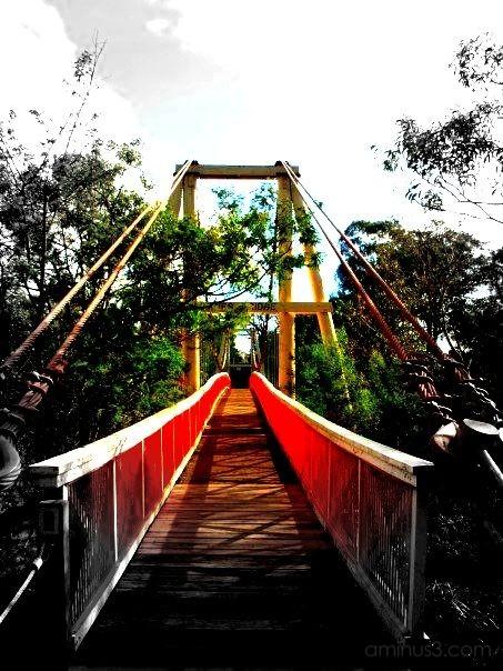 bridge in melbourne, australia