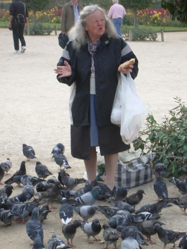 Pigeon Lady in Paris