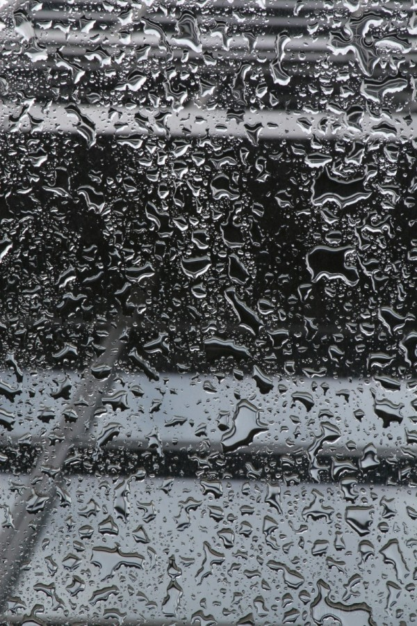 Rain on an Awning in Seattle