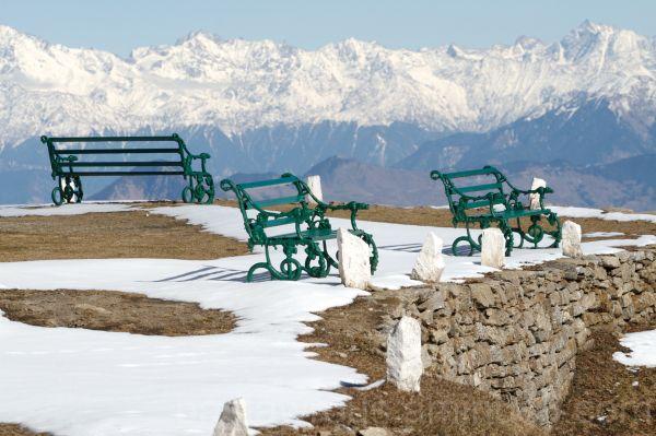 Shimla benches