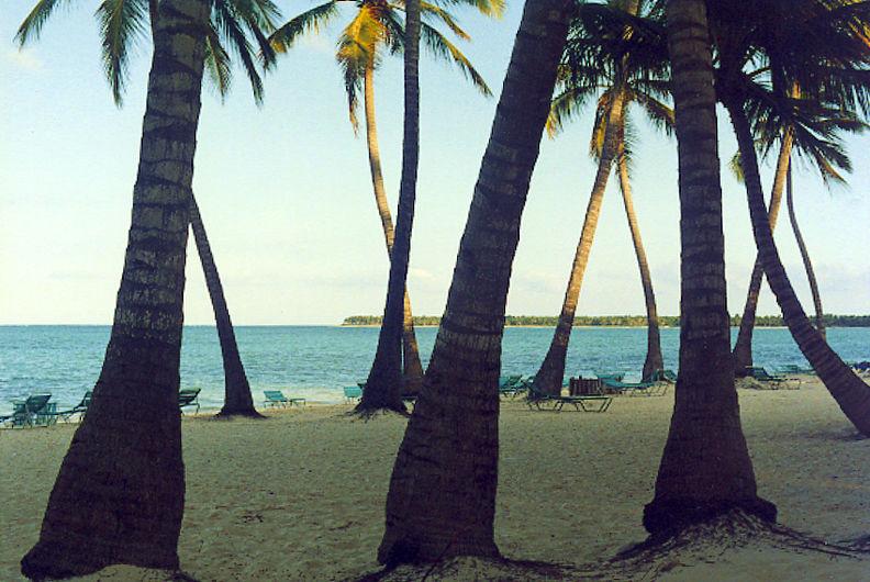 punta cana - república dominicana - II