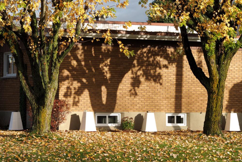 chaud matin d'automne - warm autumn morning