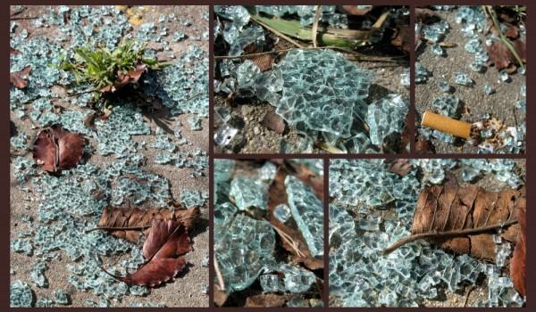 Broken Glass on the Sidewalk