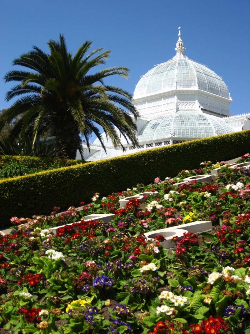 The floral clock at the Conservatory of Flowers