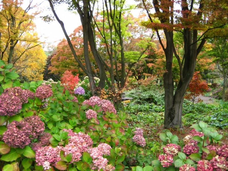 The Botanic Gardens in Christchurch