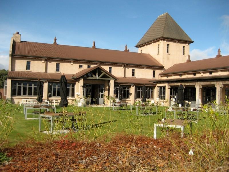 Montana Vineyard in Blenheim