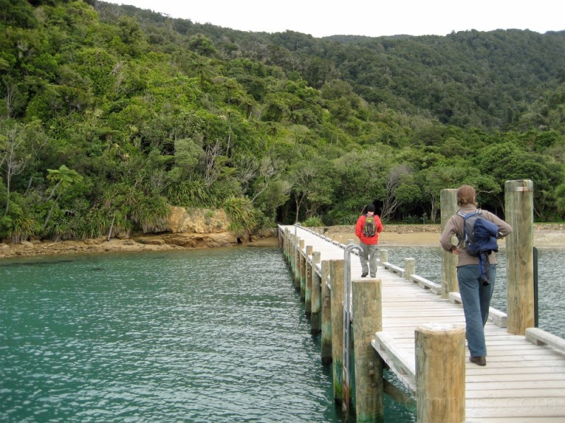 Jodie starting the Queen Charlotte Track