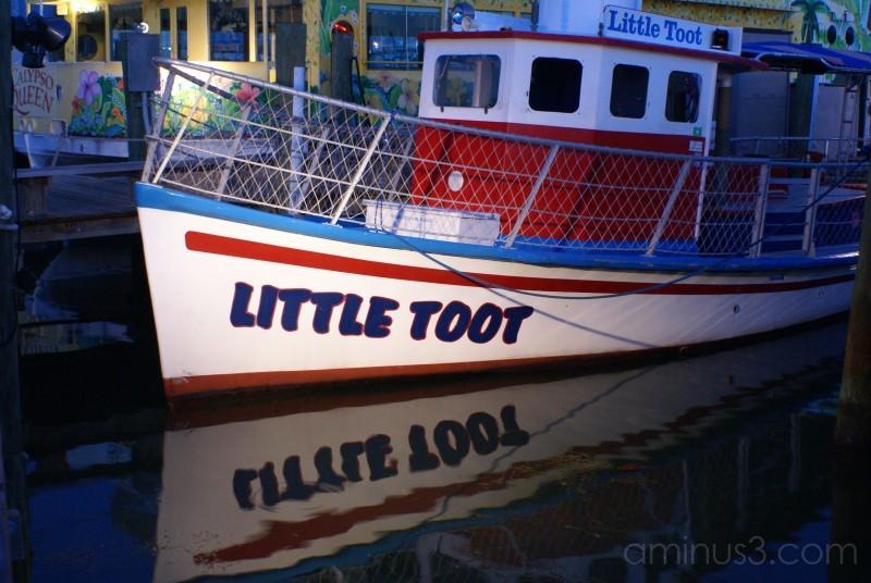 Florida Intercoastal dolphin boat