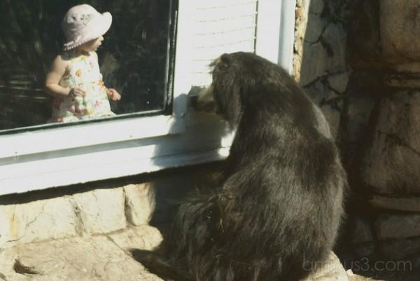 Open the Door.... I Don't Think So!