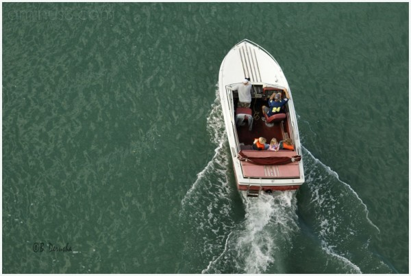 small boat clearwater harbor florida