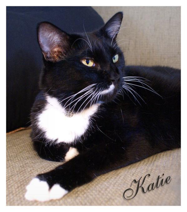Katie says Thank You!