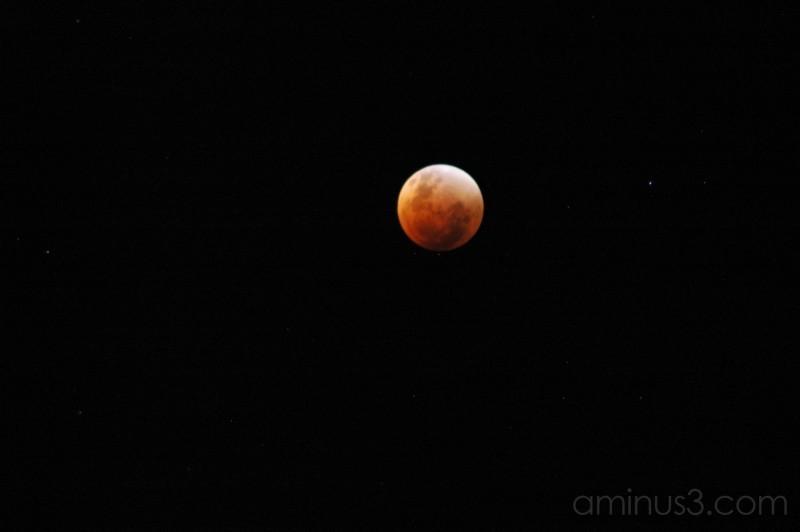 NZ eclipse