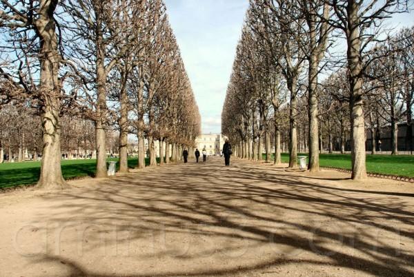 Paris, France, parc, luxembourg