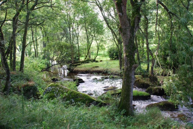 campagne,ruisseau,Finistere