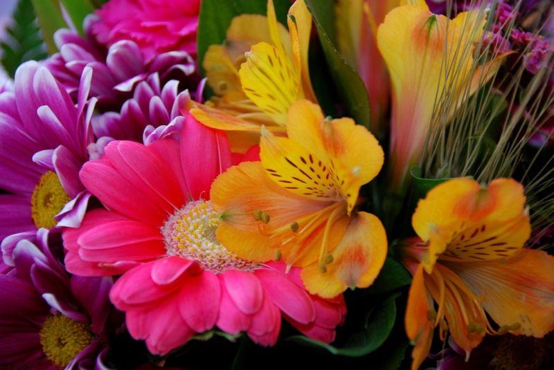 fleur,bouquet