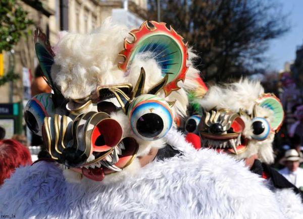 Carnaval de Paris 2011   2