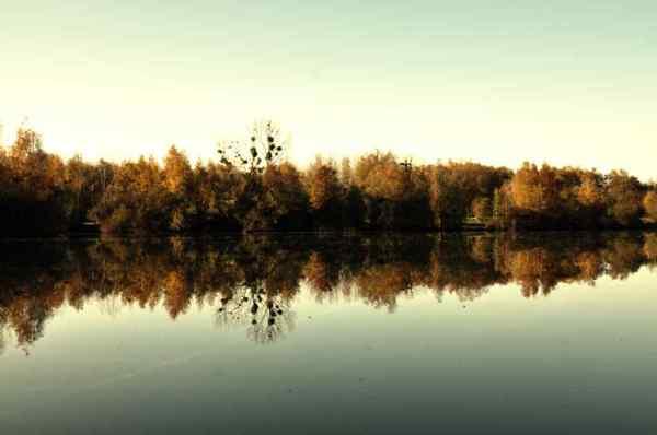 paysage,automne